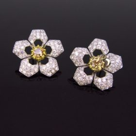 Star Brown and White Diamonds Earrings